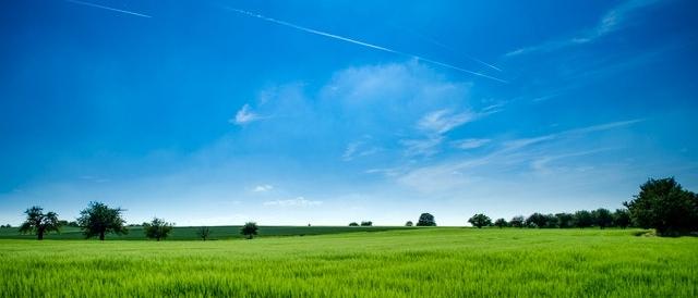 Olanmark gräs